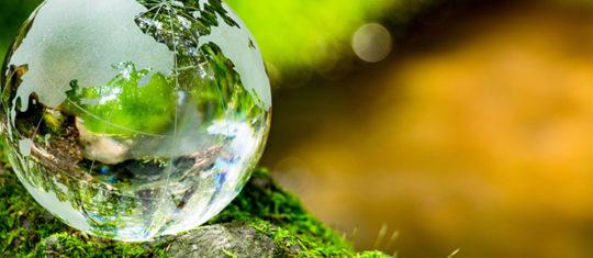 Formation en environnement et développement durable