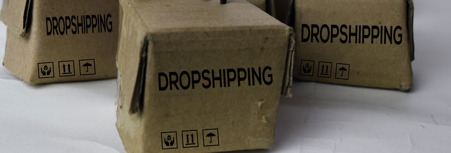 grossiste dropshipping